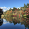 地元民のおすすめ!軽井沢周辺の外さない紅葉スポット7選
