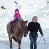 【写真多めレポ】青森冬まつりに行ってきた!冬だけどあったかいお祭りでした。