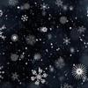 「初雪」を観測したらしいのですが、まだ私は見ておりません。