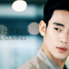 KIM SOO HYUN'S FALL COMING ・・・ZIOZIA