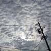 羊雲(と竜巻)。
