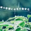 長崎県 天候の影響による行動変化
