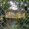 Little Tree Garden / リトル ツリー ガーデン at Nakorn Pathom(นครปฐม) / ナコンパトム