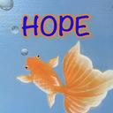 希望発見ブログLooking for HOPE
