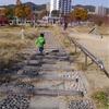 【育児】3歳児を頑張って歩いてもらう方法 ~ごっこ遊びをしながら楽しく歩こう~