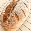 全粉粒のパン