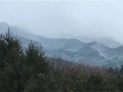 冬本番〜中央道を走っていると雪が降ってきました〜