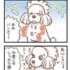 お薬の攻防【102】