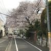 代々木上原不動産 賃貸 毎日速報!!4/13(木)