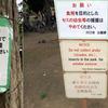 公園でセミを食用目的で大量乱獲する人に自治体激怒 杉並区