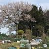 今なお残る高台の「ごはん塚」の悲話(横浜市緑区)