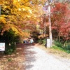 秋真っ盛り!瀞峡&瀞ホテル&ハヤシライス♪