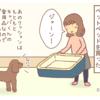 『飼い主の目論見』【キャバリア・トイプードル4コマ】