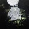 塩・砂糖・ミョウバン・ワイン・カルキ抜きで大きな結晶を作ってみよう!~自由研究を組み立ててみた~【勝手に自由研究】