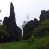 ベトナムのサパ、ハムロン丘に軽い気持ちで登ってみたら大変だった!
