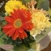 可愛いお花をいただきました*
