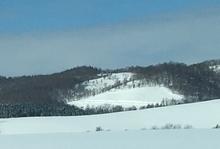 白色のソロ用テントを数値で比較。清楚に大自然の一部になってみたい!