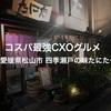 コスパ最強CXOグルメ〜愛媛県松山市 四季瀬戸の味 たにた〜