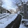 京都大原「三千院」雪景色スナップ写真