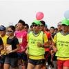 【その4】サブ3.5ランナーになる為の最後の試練 、そしてゴールへ  〜湘南国際マラソン2016〜