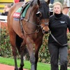 17/03/14 National Hunt Racing - Cheltenham Festival - Ultima Handicap Chase (G3)