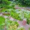 バラ園 4K Drone Japan  『ドリプレ ローズガーデン』【絶景】空撮 ドローン