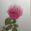 最近購入した絵画について④『バラ f23』(近藤俊一)