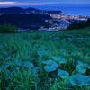 【2019年6月】北海道旅行 ~その5:天狗山のブルーアワー撮影編~