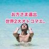 お方さまの苦笑日記 「お方さま選出!!世界2大オトコマエ!!の巻」