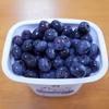 #0095 山梨県で採ってきた新鮮なブルーベリーでブルーベリーヨーグルトを作って食べてみた。
