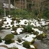 京都 三千院の初午大根焚き