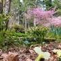 花壇や畑に肥料を施した三月末