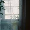 日々を写したULTRAMAX400