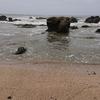 【孫悟空風】ビーチコーミング館山・白浜の海へ行ってみた2019お盆【ドラゴンボール外伝】