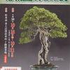 10月は信州盆栽名品展・11月は回秋雅展