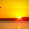 「マインドフルネス 気づきの瞑想」その13。瞑想を行なうのに最適な時間は、朝。