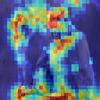 ニューラルネットは何を見ているか ~ ブラックボックスモデルの解釈可能性