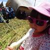 チチカカ湖に浮かぶウロス島で、3歳児お腹いっぱい「トトラ」を食べる(プーノ・ペルー