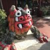 【もはやテーマパーク】名護市の百年古家 大家(うふやー)では沖縄古民家と忍者と豚と沖縄そばを堪能できる