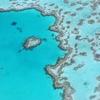 2泊4日弾丸ケアンズ⑧ グリーン島の行き方やツアーをご紹介します!【ビッグキャット】