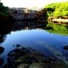 ロクルム島の死海で泳ぐ クロアチア ドブロブニク