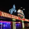 デートに「TOKYO MEGA ILLUMINATION」のイルミに行くならこちらで予習!