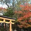 京都の宇治は平等院だけじゃない!「宇治神社・宇治上神社」もあるよ。