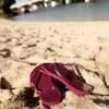 【日常・ひとりごと】新しいビーチサンダル・アンチャン(バタフライピー)・35コーヒーのハイビスカス・