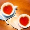 紅茶と緑茶の茶葉の種類は同じって本当!?お茶の種類分けの方法とは?