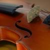8月28日は「バイオリンの日」~葉加瀬太郎の「情熱大陸」いいじゃない?~