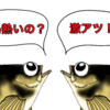 絶好調!!野島沖堤防ハアハア祭り3日目前半!!(*´Д`)