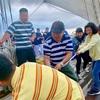 Sea Shantyは歴史を体感する旅