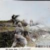 沖縄作戦の「成功」