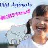 野生動物保護チーム:株式会社スタジオレイ
